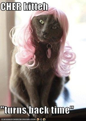 "CHER kitteh  ""turns back time"""