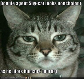 Double agent Spy-cat looks nonchalant  as he plots humans' murder