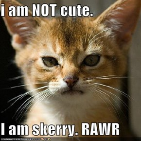 i am NOT cute.  I am skerry. RAWR
