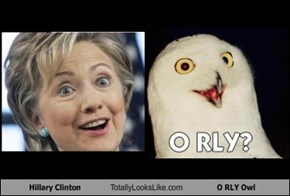 Hillary Clinton Totally Looks Like O RLY Owl