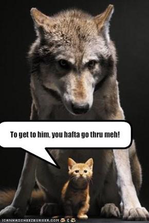 To get to him, you hafta go thru meh!