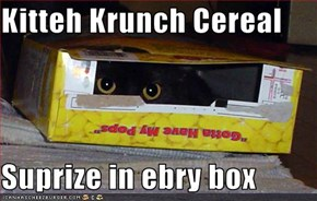Kitteh Krunch Cereal  Suprize in ebry box