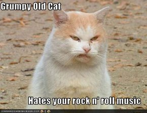 Grumpy Old Cat  Hates your rock n' roll music