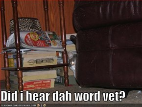 Did i hear dah word vet?