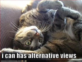 i can has alternative views