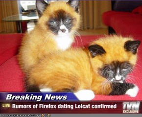 Breaking News - Rumors of Firefox dating Lolcat confirmed