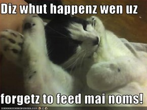 Diz whut happenz wen uz  forgetz to feed mai noms!