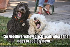 """So goodbye yellow brick road, where the dogs of society howl..."""