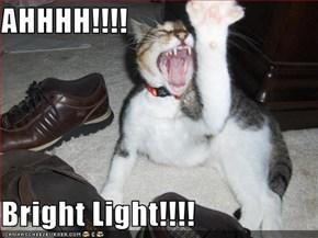 AHHHH!!!!  Bright Light!!!!