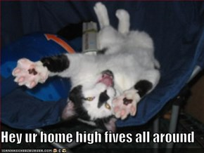 Hey ur home high fives all around