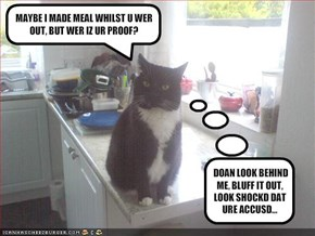 MAYBE I MADE MEAL WHILST U WER OUT, BUT WER IZ UR PROOF?