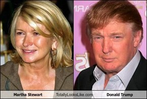 Martha Stewart Totally Looks Like Donald Trump