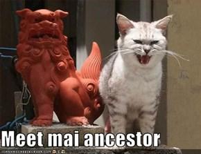 Meet mai ancestor