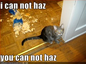 i can not haz  you can not haz