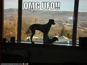 OMG UFO!!
