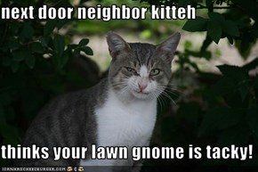 next door neighbor kitteh  thinks your lawn gnome is tacky!
