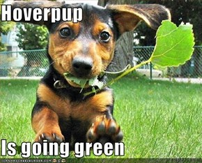 Hoverpup  Is going green