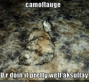 camoflauge  U r doin it pretty well aksullay
