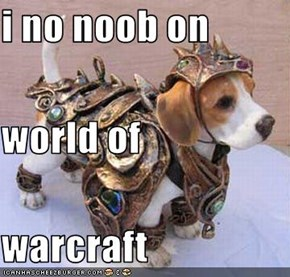 i no noob on world of  warcraft
