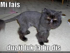 Mi fais    duz it luk fat in dis