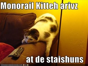 Monorail Kitteh arivz  at de staishuns