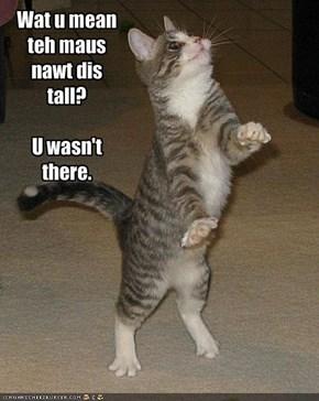 Wat u mean teh maus nawt dis tall?U wasn't there.