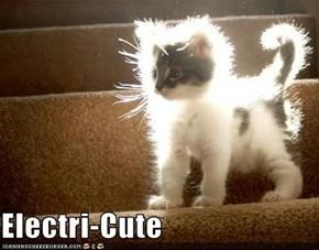 Electri-Cute