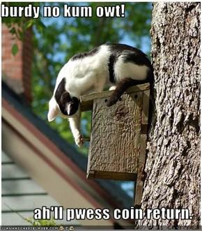 burdy no kum owt!  ah'll pwess coin return.