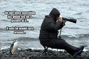 He has been searching his whole life for a picture of it...