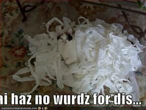 ai haz no wurdz for dis...