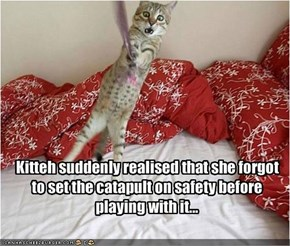 Kitteh suddenly realised that she forgot to set the catapult on safety before playing with it...