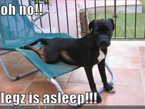 oh no!!  legz is asleep!!!