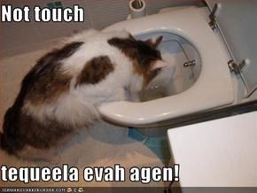 Not touch  tequeela evah agen!