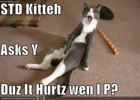 STD Kitteh Asks Y Duz It Hurtz wen I P?