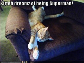 Kitteh dreamz of being Superman!