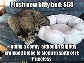 Plush new kitty bed: $65