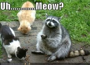 Uh.............Meow?
