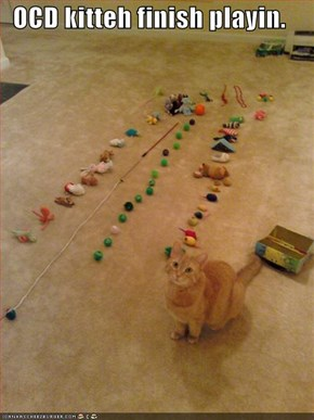 OCD kitteh finish playin.