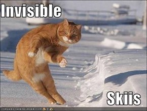 Invisible  Skiis