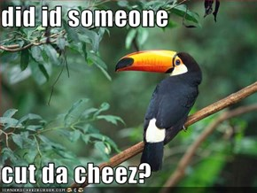 did id someone  cut da cheez?