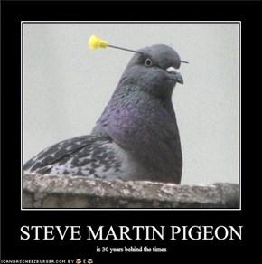 STEVE MARTIN PIGEON