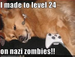 I made to level 24  on nazi zombies!!