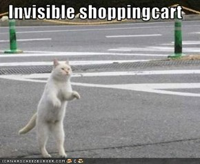 Invisible shoppingcart