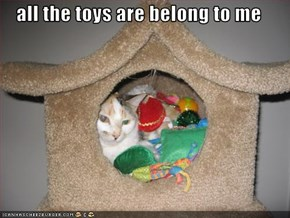 all the toys are belong to me