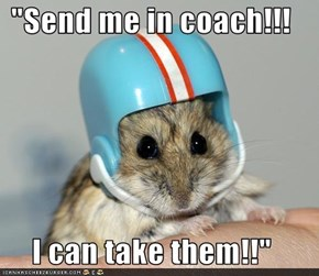 """Send me in coach!!!  I can take them!!"""