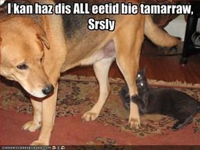 I kan haz dis ALL eetid bie tamarraw, Srsly