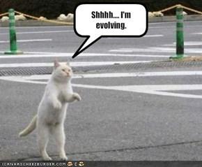 Shhhh.... I'm evolving.