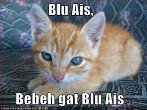 Blu Ais,  Bebeh gat Blu Ais