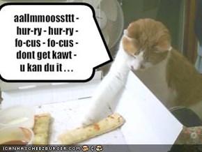 aallmmoossttt - hur-ry - hur-ry - fo-cus - fo-cus -dont get kawt -u kan du it . . .