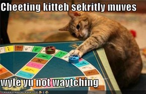 Cheeting kitteh sekritly muves  wyle yu not waytching